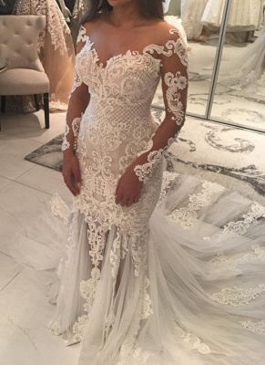 Long Sleeve Lace Wedding Dress | 2020 Mermaid Bridal Gowns On Sale_1