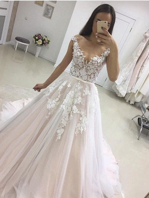 Elegant V-neck Lace Appliques 2020 Wedding Dress Tulle Wedding Reception Dress Online_1