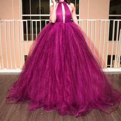 Gorgeous High-Neck Tulle Evening Dress Ball Gown Prom Dress_3