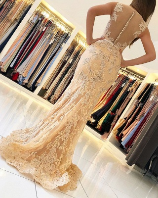 Charming Sleeveless Mermaid Evening Dresses | 2020 Lace Prom Gowns On Sale BC0389_2