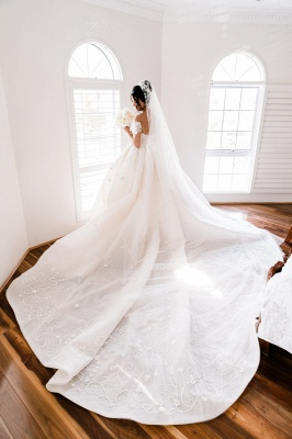 Glamorous Off-the-Shoulder Wedding Dress Appliques Sweep Train Ball Gowns_3