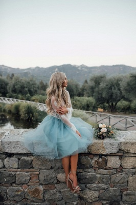 Long Sleeve Lace 2020 Short Prom Dress Tulle Party Gowns_5