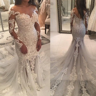 Long Sleeve Lace Wedding Dress | 2020 Mermaid Bridal Gowns On Sale_3