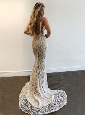 Gorgeous V-Neck Prom Dress | 2020 Lace Mermaid Evening Gowns BA9393 BA7977_3