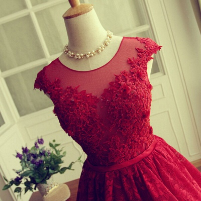 Delicate Red Lace Appliques 2020 Homecoming Dress Mini Cap Sleeve BA3604_5