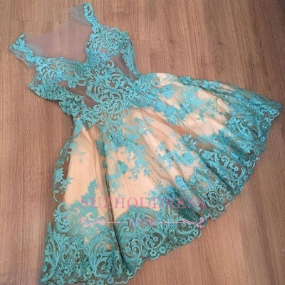 Short Tulle Sleeveless Appliques A-Line Newest Homecoming Dress BC0004_1