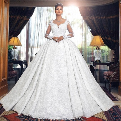 Glamorous Long Sleeve Lace Wedding Dresses | 2020 Ball Gown Bridal Gowns On Sale_2