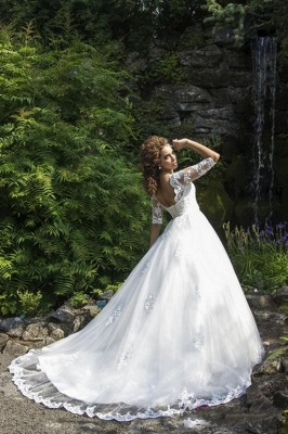 Delicate Lace Appliques Half Sleeve Wedding Dress 2020 Crystal Lace-up Sweep Train_3