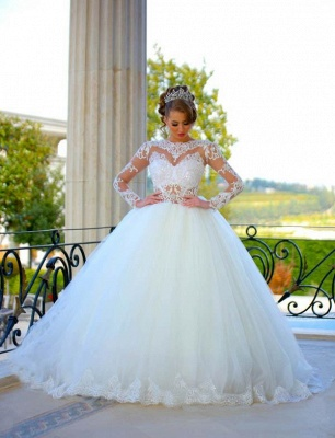 Delicate Long Sleeve Tulle Wedding Dress Ball Gown Lace Appliques_1