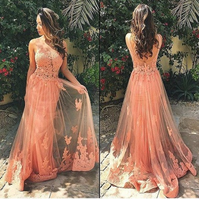 Gorgeous Sleeveless Lace Prom Dress 2020 Tulle Open Back_3