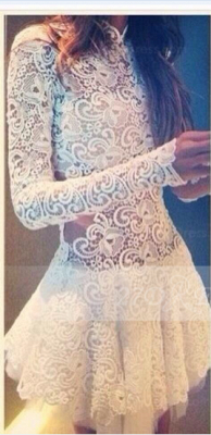 Sexy Lace See Through Homecoming Dresses High Neck Short Zipper Spring Cocktail Dresses 2020 with Appliques_1