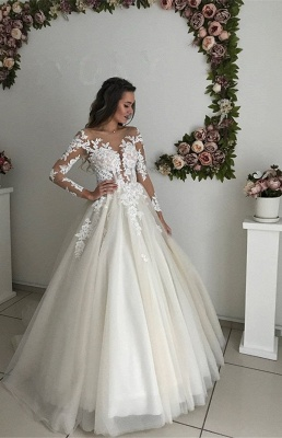 Gorgeous Long Sleeve Tulle Wedding Dresses | 2020 Zipper Button Back Bridal Gowns On Sale_1